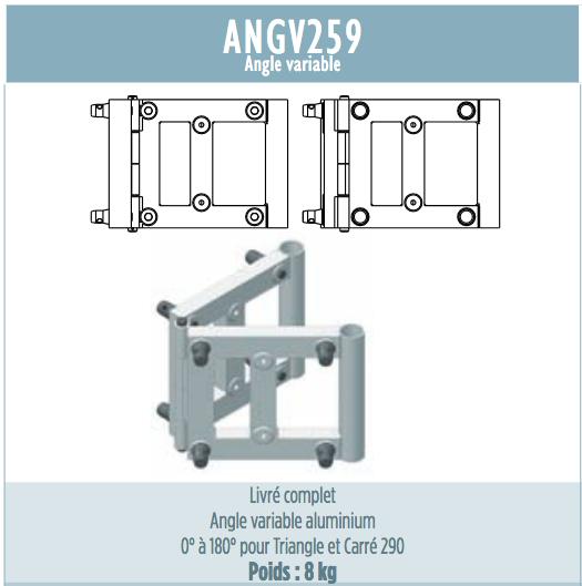 ANGLE VARIABLE ANGV259